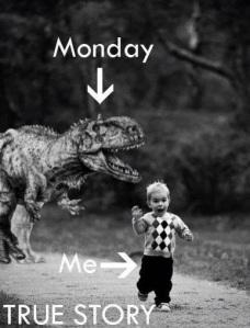 lunedì: si inizia!
